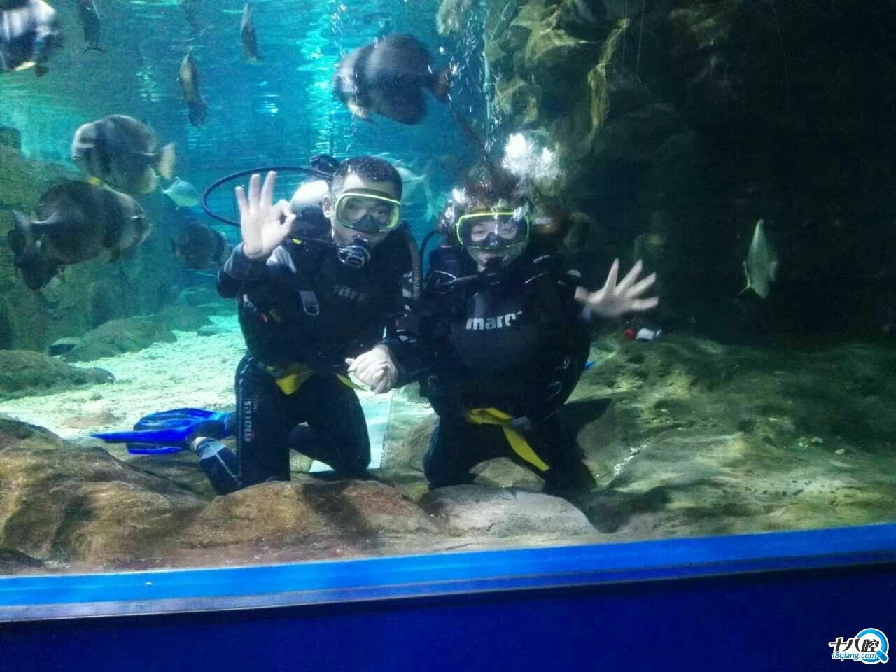 义乌奇趣海洋世界潜水俱乐部