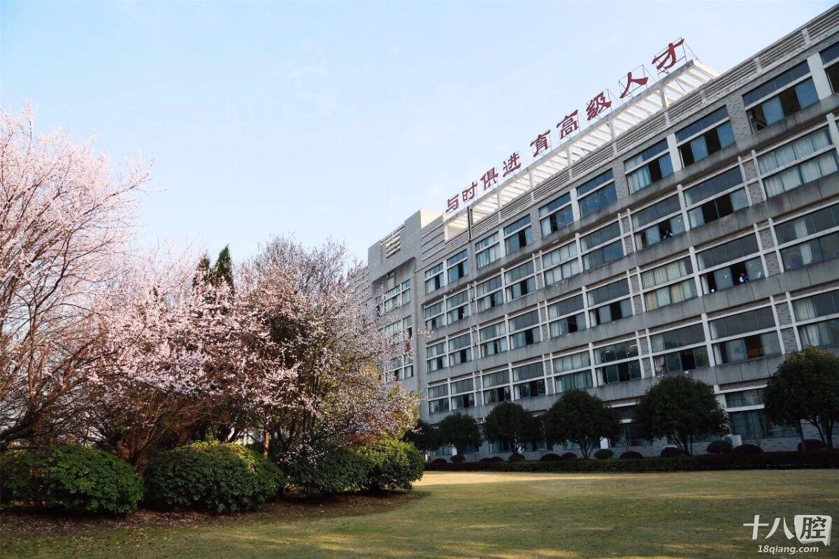 浙江省机电技师学院面向全国招生,初中毕业,高中毕业
