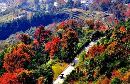 浙江秋天最美的11个景点,景色宜人还能省钱!