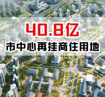 起拍价40亿义乌市场向阳挂牌