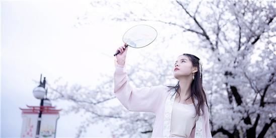 三月櫻花開