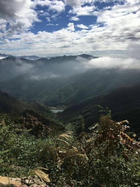 陆志坚 南方风景