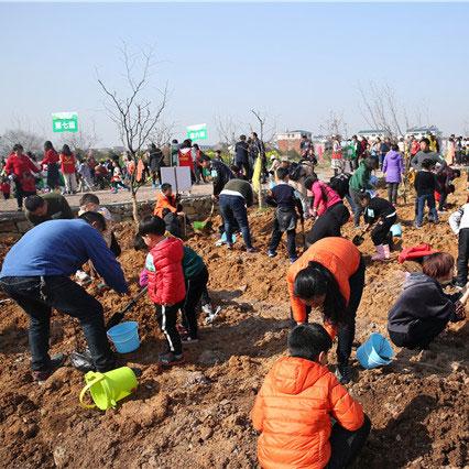 义乌市公益植树亲子活动