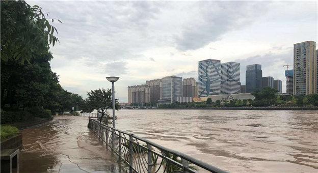 台风过后,义乌江水位暴涨