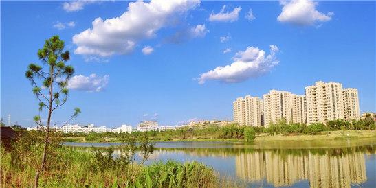 稠江公园的一个晴天